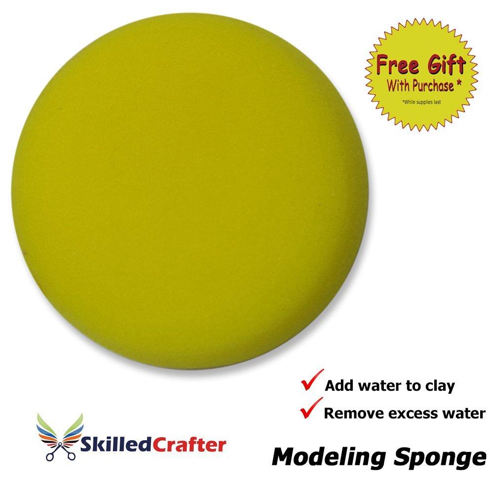 Modeling Sponges